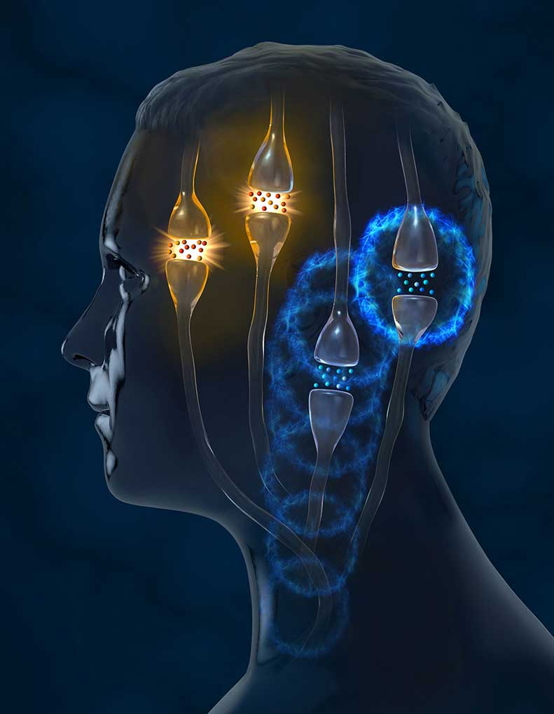 CGI-illustration-Medical_Head Neurons-Craig Zuckerman