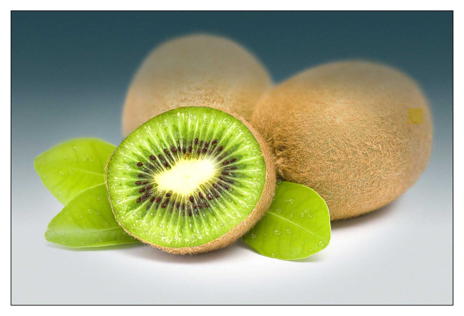 CGI-illustration-Still-Life_Kiwi