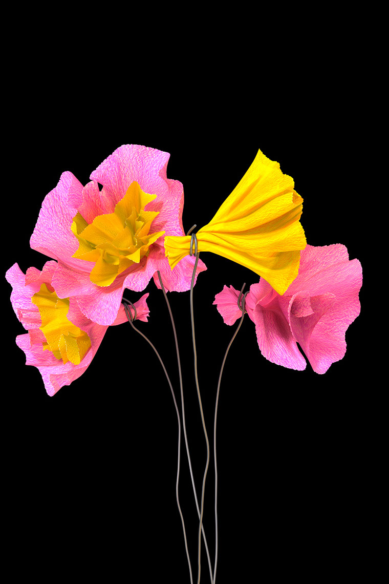 CGI-illustration-Still Life_Paper flowers