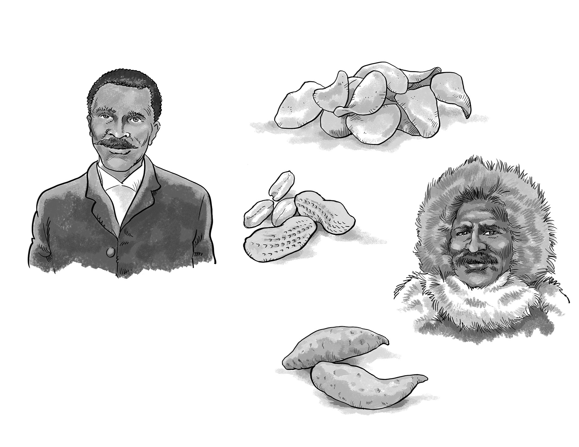 Illustration_People_George Washington Carver Black History-Bot-Roda