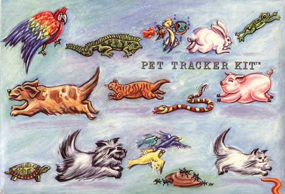 Pet Tracker Kit