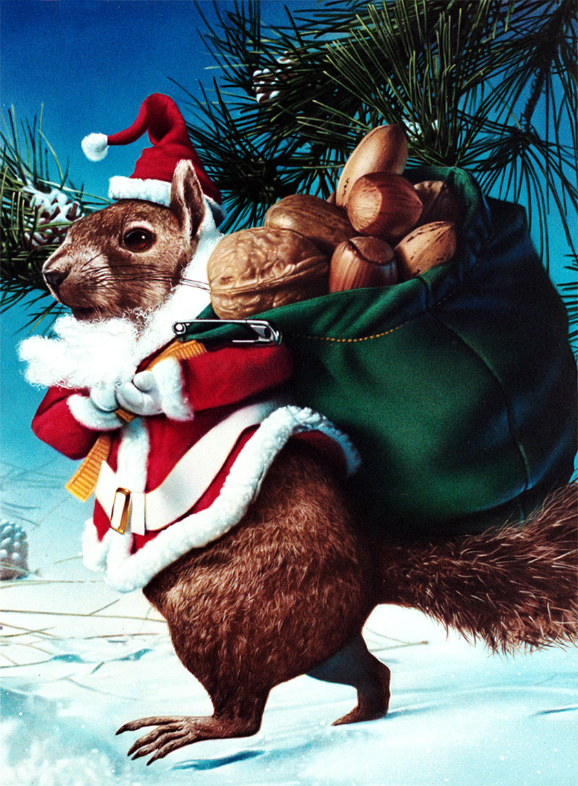 Photo-Imaging_Animals and Nature_Santa squirrel-Stan Watts