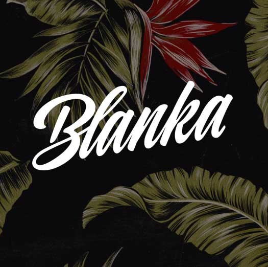 Studio-Blanka-Logo-on-Hawaiian-Floral-Pattern