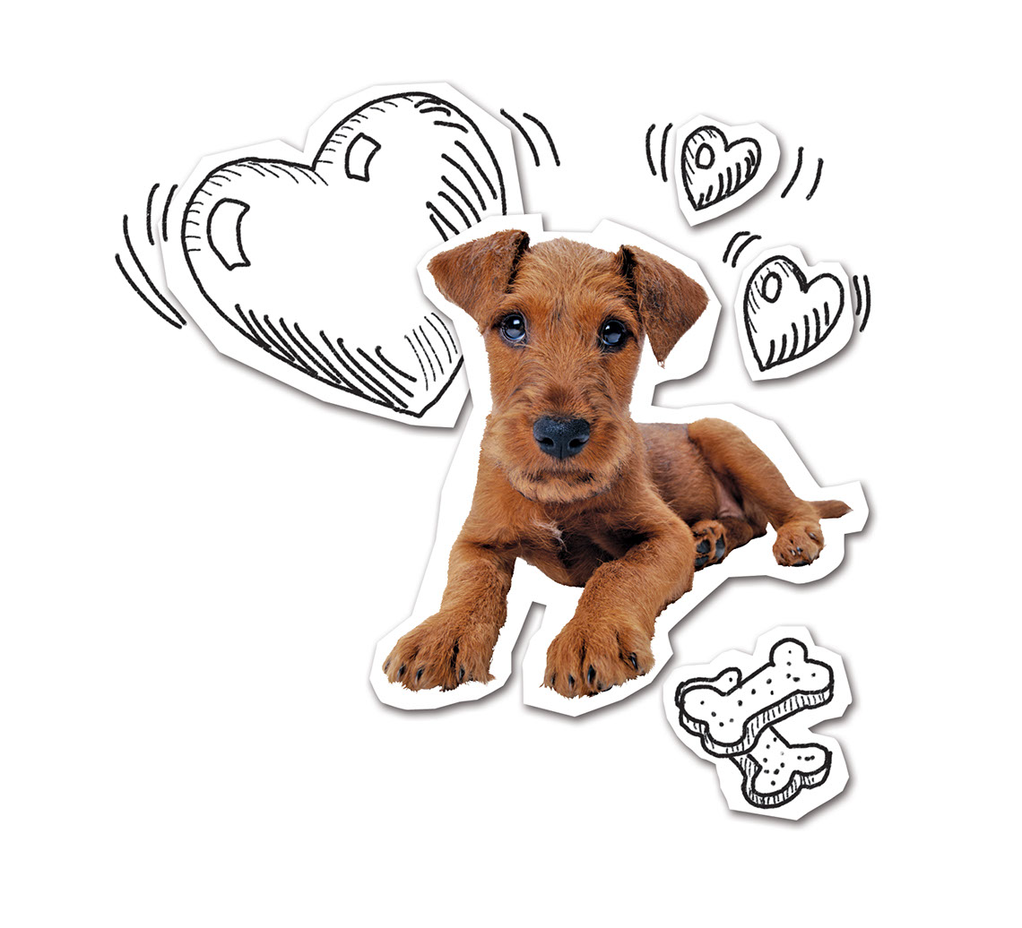 Taylor Lee_Illustration_Animals and Nature_Puppy with hearts