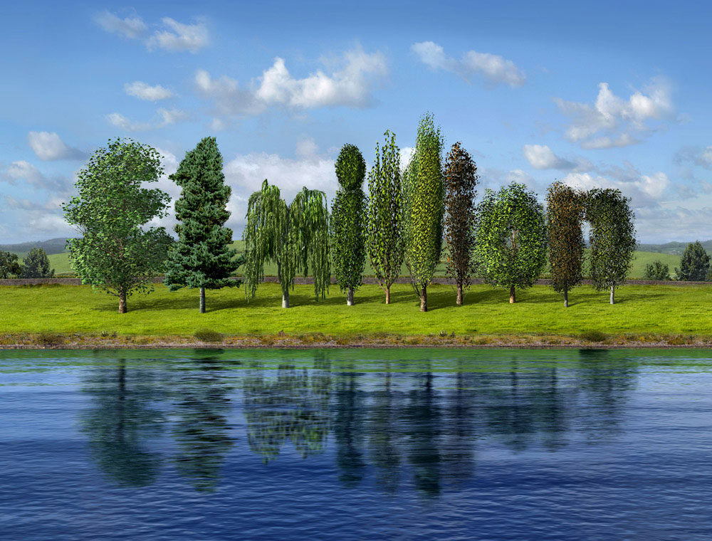 cgi-illustration-Still Life_Trees across pond
