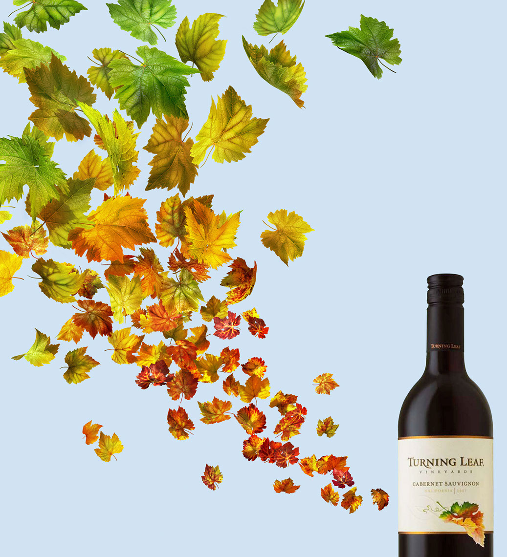 cgi-illustration-Still Life_Turning leaf wine