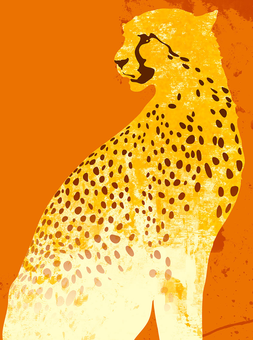 illustration-Animals_Cheetah-Don Bishop