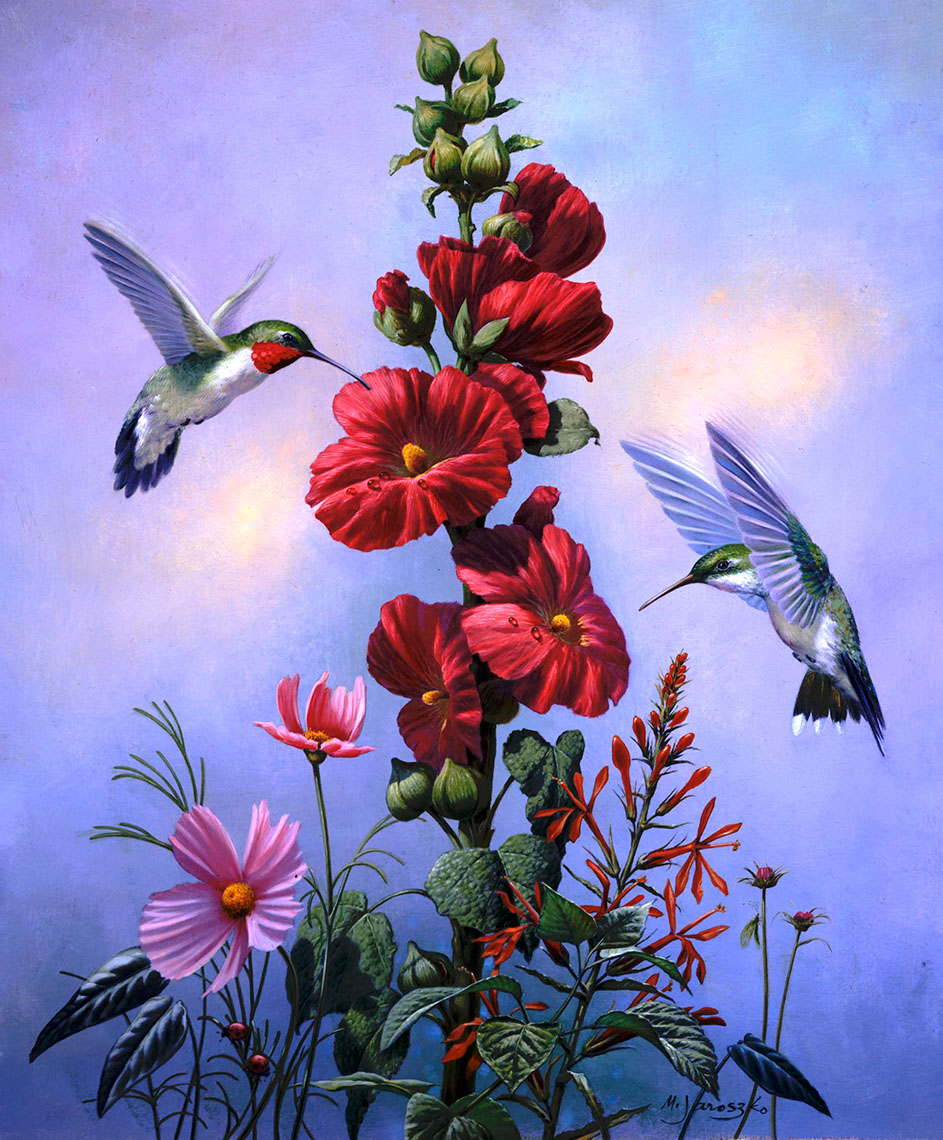 illustration-Animals and Nature_Hummingbird and Hibiscus-Mike Jaroszko