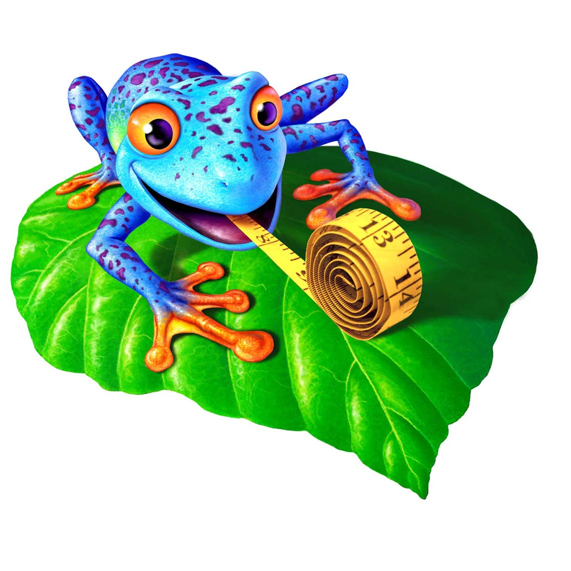illustration-Animated_Animals_Animal Stylized Frog-Jerry LoFaro