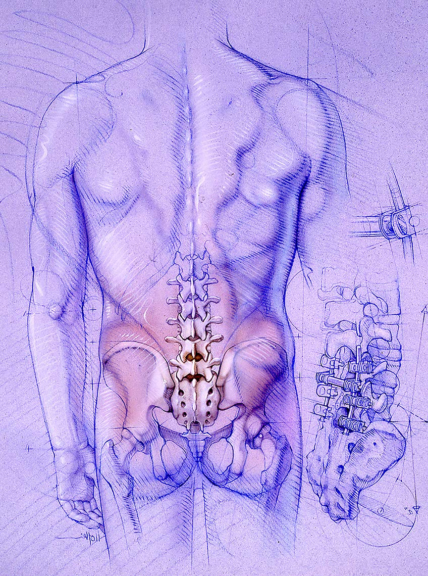 illustration-Blue-Back-F-Bonnie Hofkin
