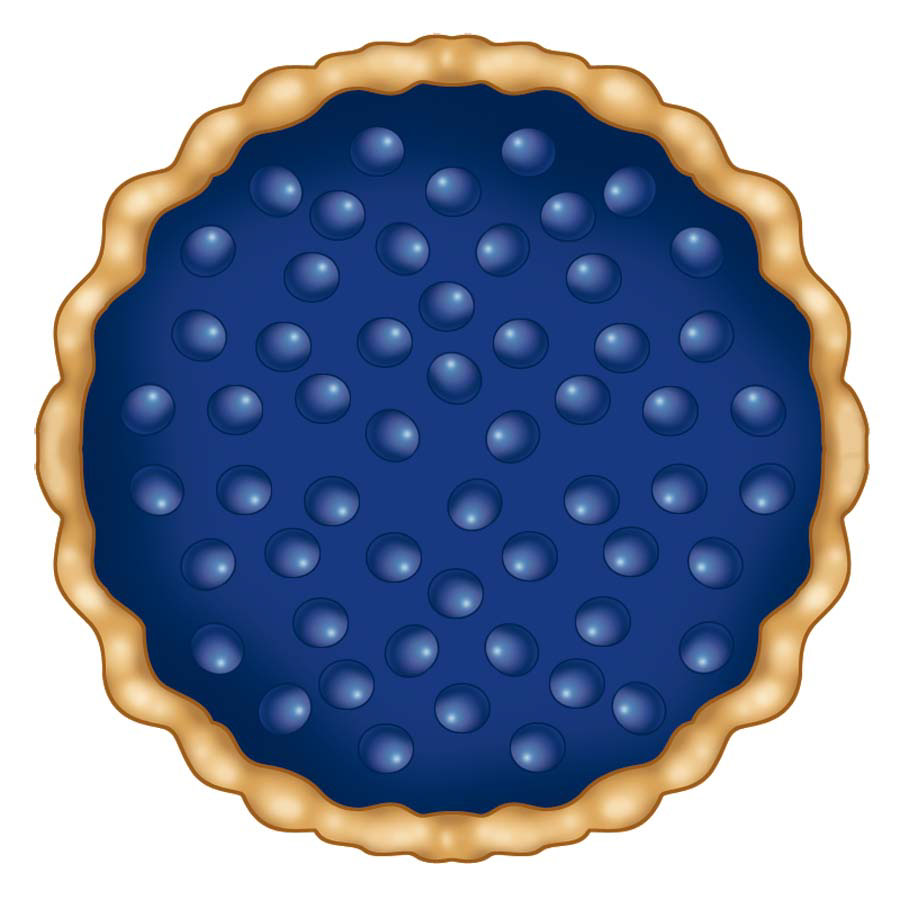 illustration-Food_Blueberry pie-Don Bishop