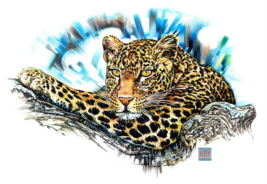 illustration-Garth Glazier_Animals_Leopard