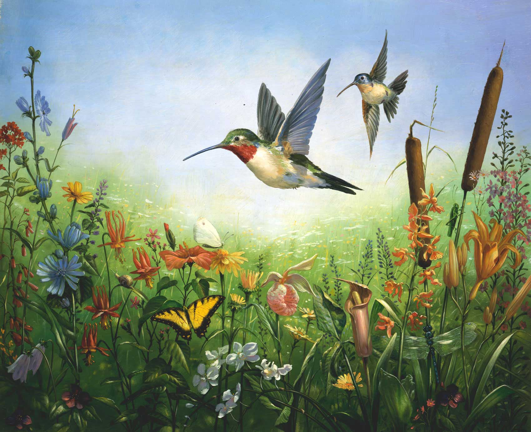 illustration-Landscapes_Hummingbird-meadow-Mike-Jaroszko
