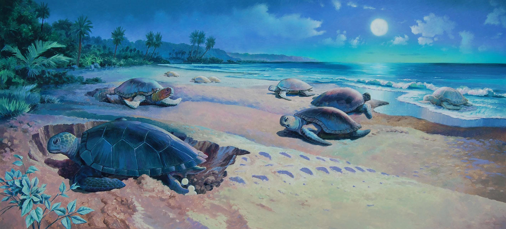 illustration-Landscapes_Turtles walking across the beach-Mike Jaroszko