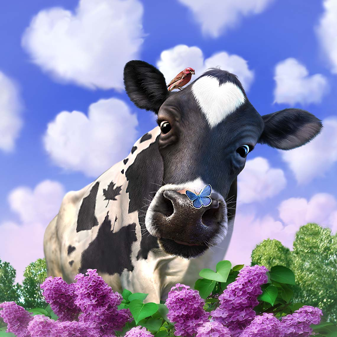 illustration-animals and nature-cow with heart markings  in field-Jerry LoFaro