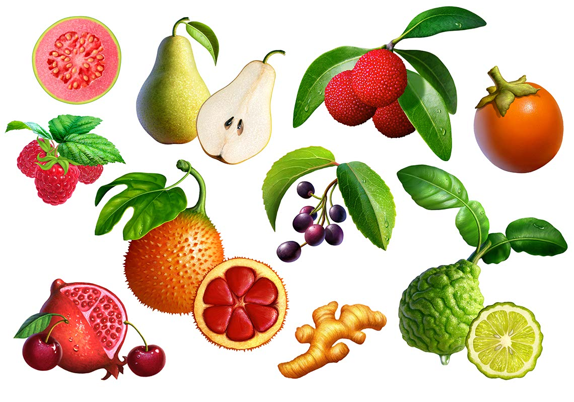 illustration-food-Celestaial_Kombucha_Assorted fruit-Jerry LoFaro