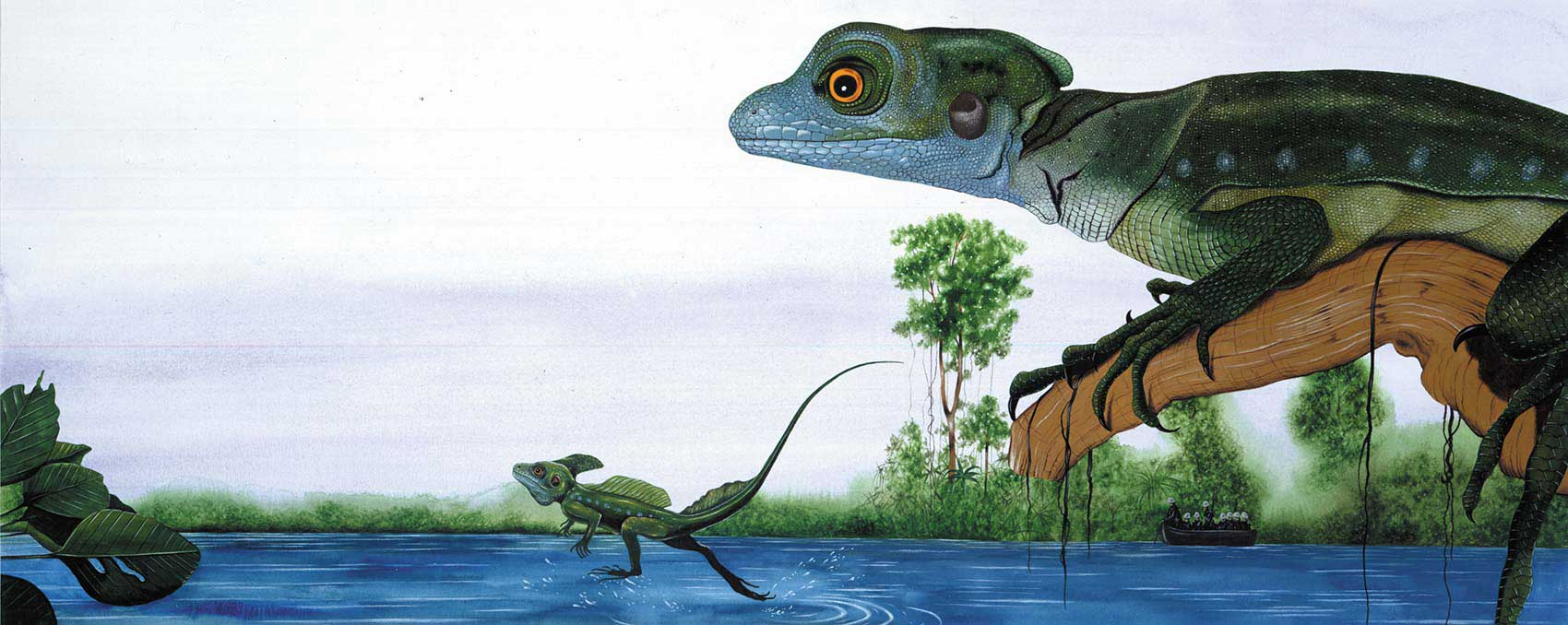 illustration-realistic-animals-lizard