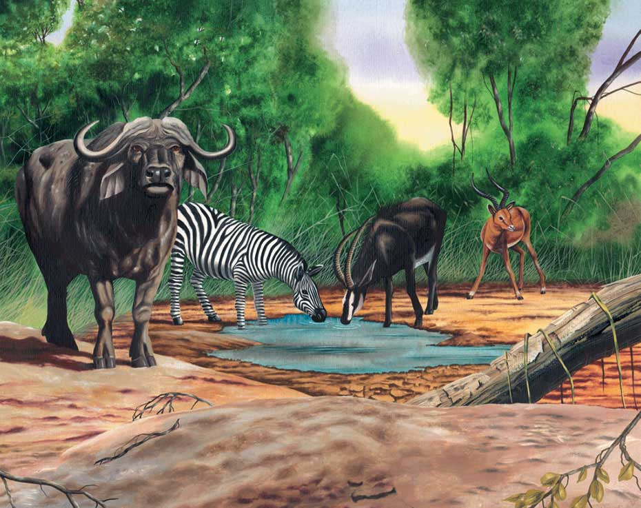 illustration-realistic-animals-watering-hole