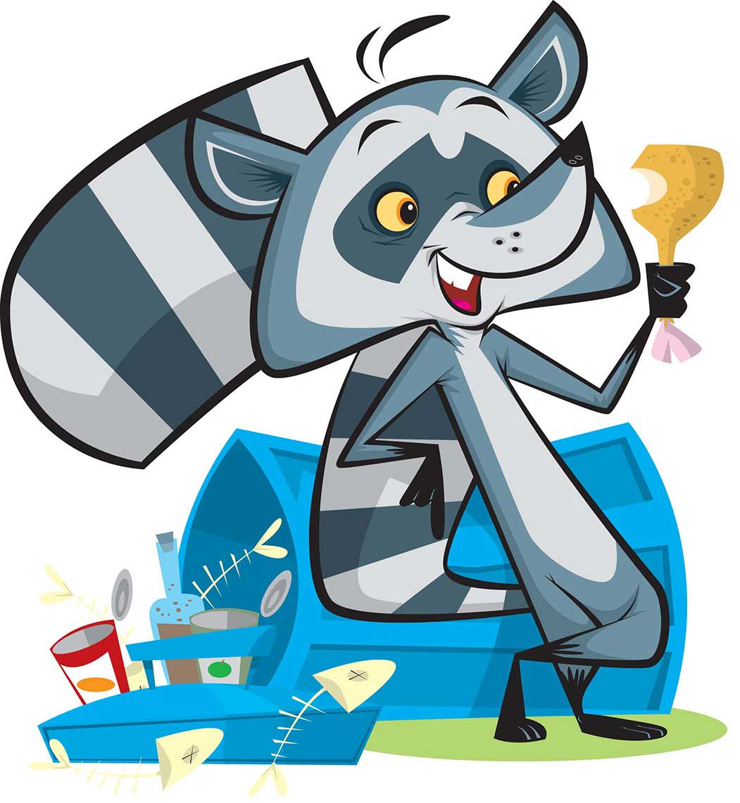 vector-animal-character-design-racoon